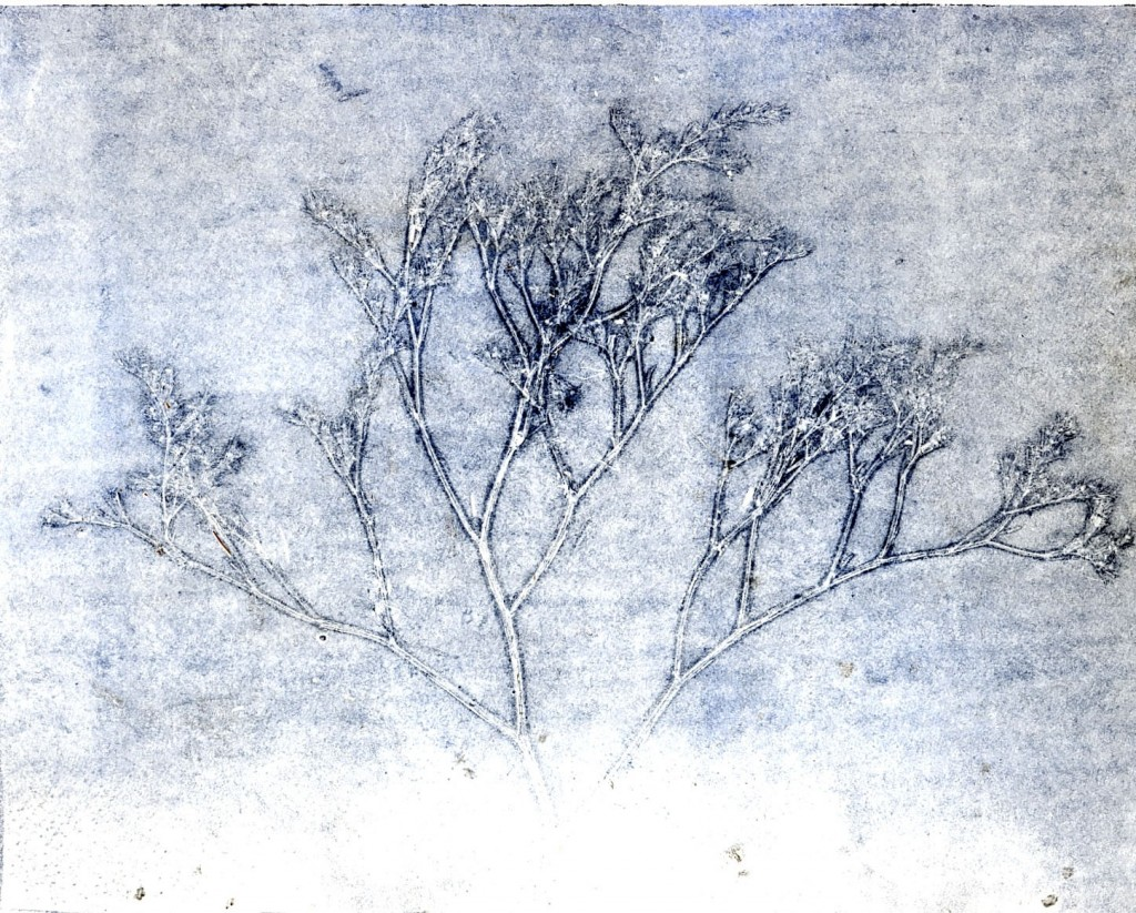 anima, monotipo, 2002